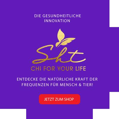 Logo - sht-chi.com